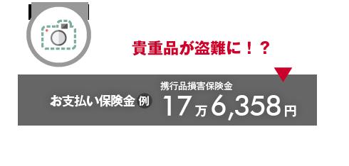 貴重品が盗難に!?→お支払い保険金(例)携行品損害保険金17万6,358円
